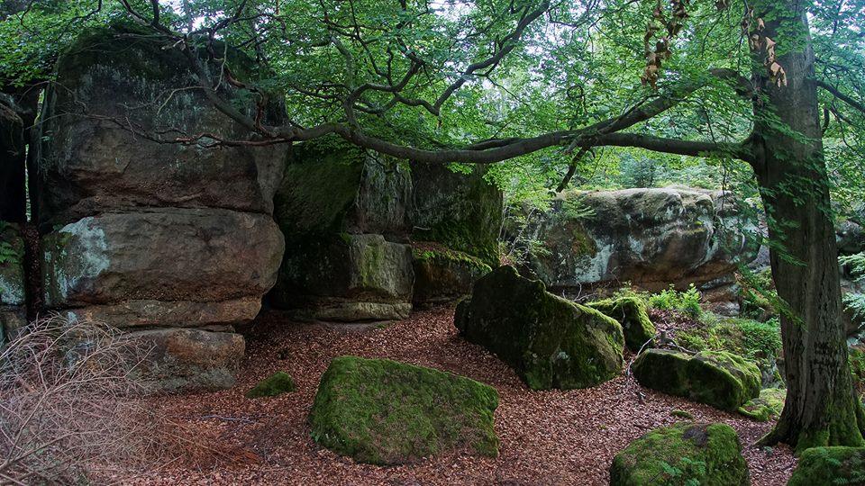Ruiny Zamku Karlsfried