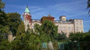 Zamek Leśna